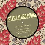 ESTEBAN ADAME - Mayan Basement (Front Cover)