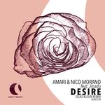 Desire (Eelke Kleijn Remixes)