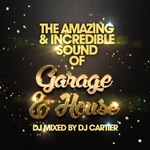 The Amazing & Incredible Sound Of Garage & House! (unmixed tracks)