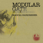 MODULAR GATE - Magical Hairdresser (Front Cover)