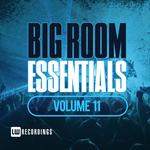 Various: Big Room Essentials Vol 11
