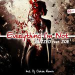 Everyting I'm Not