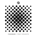 FUNKWARE - True Thoughts (Front Cover)