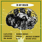 VARIOUS - In My Brain (Front Cover)