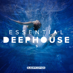 Essential Deep House 5