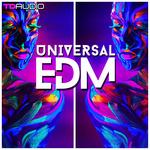 TD Audio: Universal EDM (Sample Pack WAV/MIDI/VSTI Presets)