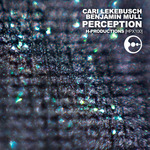 Cari Lekebusch/Benjamin Mull: Perception