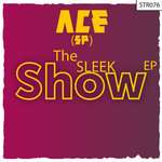 The Sleek Show EP
