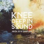 Various: Ibiza 2018 Sampler