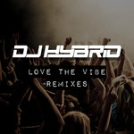 Love The Vibe Remixes