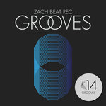 Grooves 14