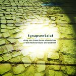 VARIOUS - SynapsenSalat (Deep Electronic Brain Stimulation Of Dub Techno House & Ambient) (Front Cover)