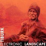 Electronic Landscape