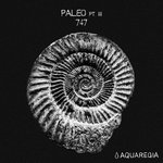Paleo, Pt. 3