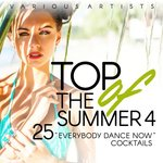 Top Of The Summer Vol 4 (25 Everybody Dance Now Cocktails)