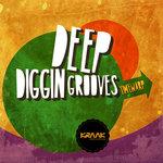 Deep Diggin Grooves