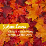 Autumn Leaves/Chilled House Vibes For The Colder Days