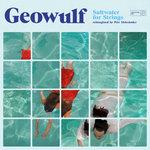 Saltwater For Strings (Reimagined By Petr Aleksander)