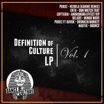 Definition Of Culture LP