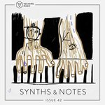 Synths And Notes 42