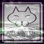 Jazz & Nujazz Tunes Vol 5