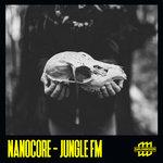 Jungle Fm