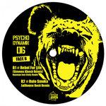 NAAMAN/RULO SMOKA - Psychodynamik 06 (Front Cover)