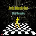 HIRO IKEZAWA - Acid Black Cat (Front Cover)