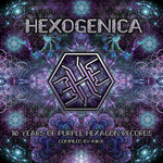 VARIOUS: Hexogenica