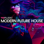 TD Audio: Modern Future House (Sample Pack WAV/MIDI/VSTi Presets)