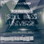 Soul Bass Universe (Sample Pack WAV)