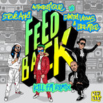 STEVE AOKI/AUTOEROTIQUE AND DIMITRI VEGAS & LIKE MIKE - Feedback (Front Cover)