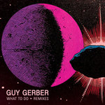 Guy Gerber: What To Do (Remixes)