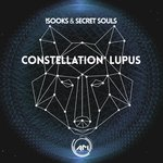 Constellation Lupus