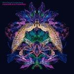 Paradise Sold Remixes