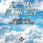 Flights In The Sky