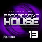 The Sound Of Progressive House Vol 13