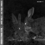 Rabbit Hole (Remixes) (feat Blak Trash)