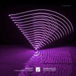 Pivot (Camo & Crooked Remix) / Sinkhole (Skeptical Remix)