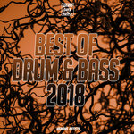 Best Of Drum & Bass 2018 (unmixed tracks)