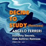 Decide To Study (Remixes)
