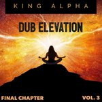 Dub Elevation Vol 3 (Final Chapter)