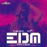 Best Of EDM Party 2019 (unmixed tracks)