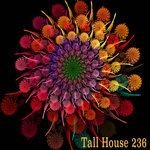 Tall House 236