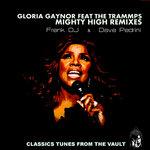 Mighty High (Frenk DJ & Dave Pedrini Remix)