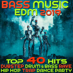 Bass Music 2019 (Top 40 Hits Dubstep Drum & Bass Rave Hip Hop Trap Dance Party)