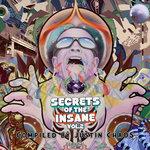 Secrets Of The Insane Vol 2