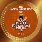 The Jackin Side Of Disco Explosion Records Vol 1