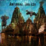 Take LSD
