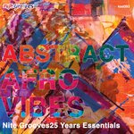 Abstract Afro Vibes (Nite Grooves 25 Years Essentials)